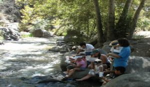 Environment - stream